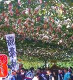 10月3日(土)山梨勝沼ワイン祭りに行って来ました!!